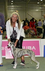 EDS-European Dog Show, Suna Regens Opal Winter Wiola BOB (pup), Judge: Patsy Gilmour UK
